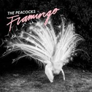 Peacocks, The - flamingo