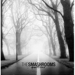 Smashrooms, The - questions