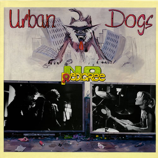 Urban Dogs - no pedigree