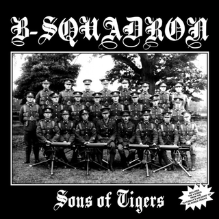 B-Squadron - sons of tigers