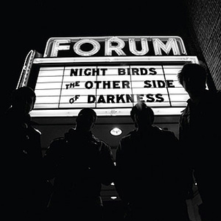 Night Birds - the other side of darkness