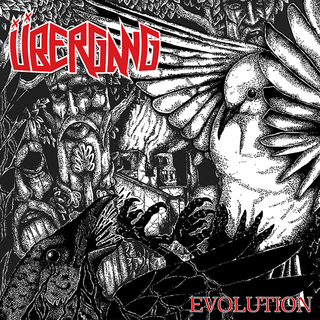 Übergang - evolution