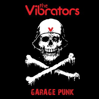Vibrators, The - garage punk