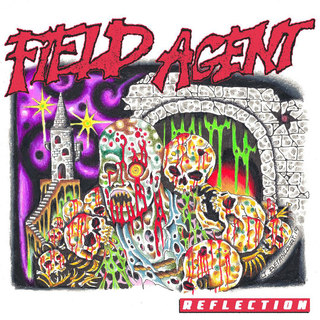 Field Agent - reflection