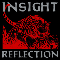 Insight - reflection PRE-ORDER